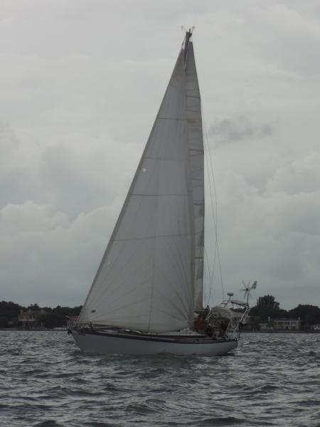 DSC03215