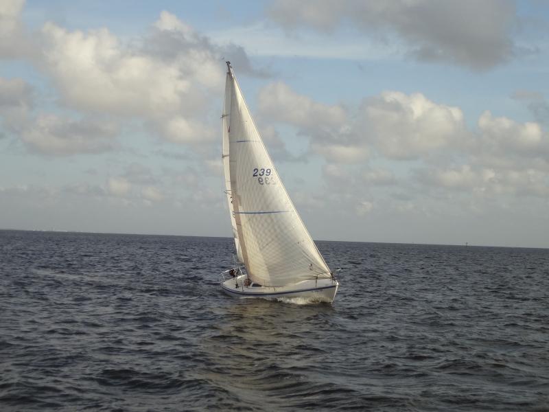 DSC03284