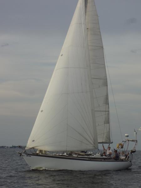 DSC03352