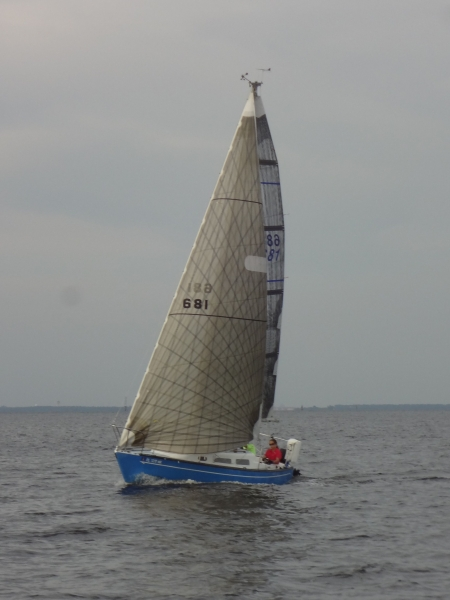 DSC03353