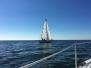 2016 Joe Corey Memorial Sail